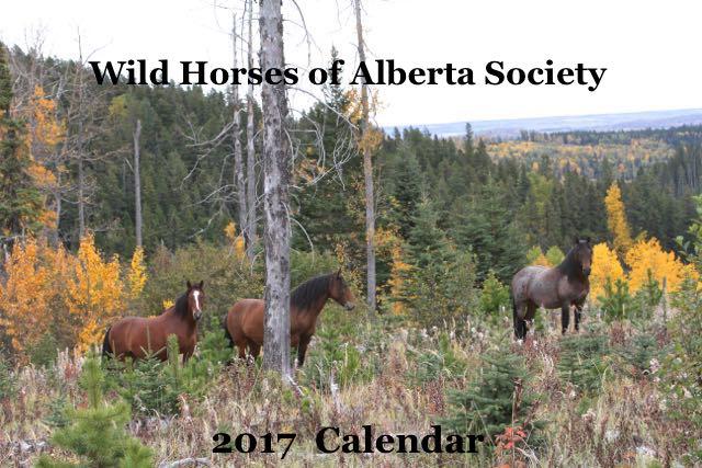2017 Fund Raising Calendar